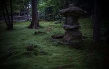 F1_Shinya-Imai_0008
